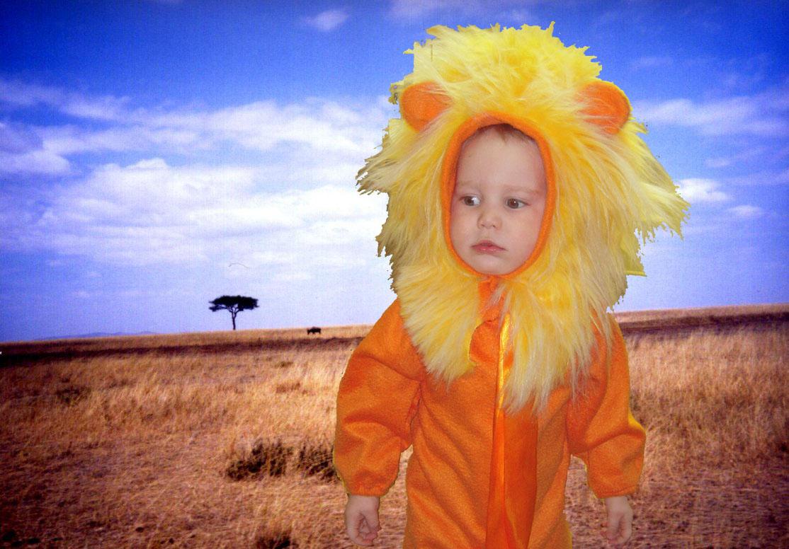 костюм Льва