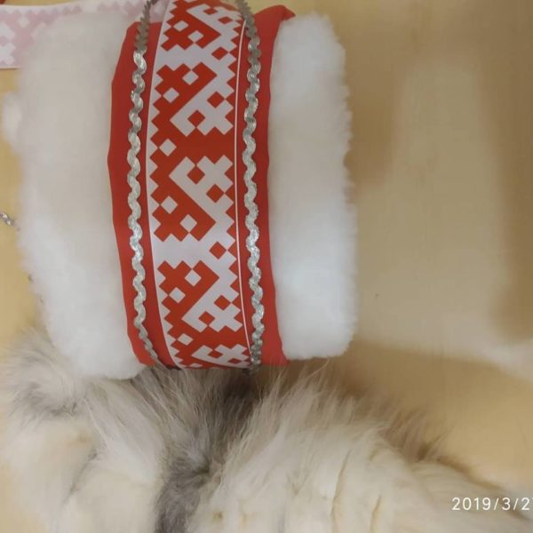 Костюм северного шамана